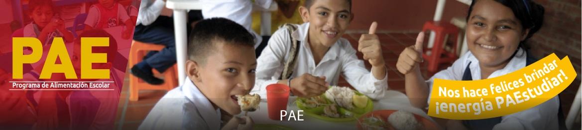 e808bb0f22 Programa de Alimentación Escolar (PAE) - Ministerio de Educación ...